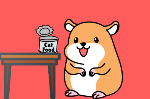 Can Hamsters Eat Other Animal Foods