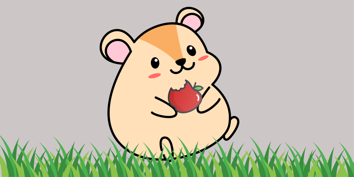What Can Hamsters Eat