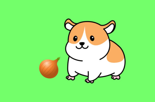 Can Hamsters Eat Onions