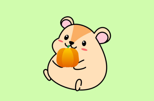 Can Hamsters Eat Pumpkin