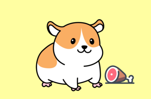 Can Hamsters Eat Ham