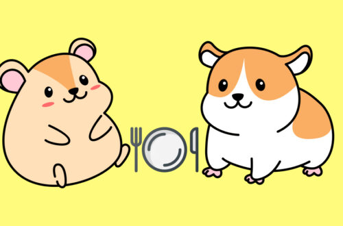 Do Hamsters Eat Each Other
