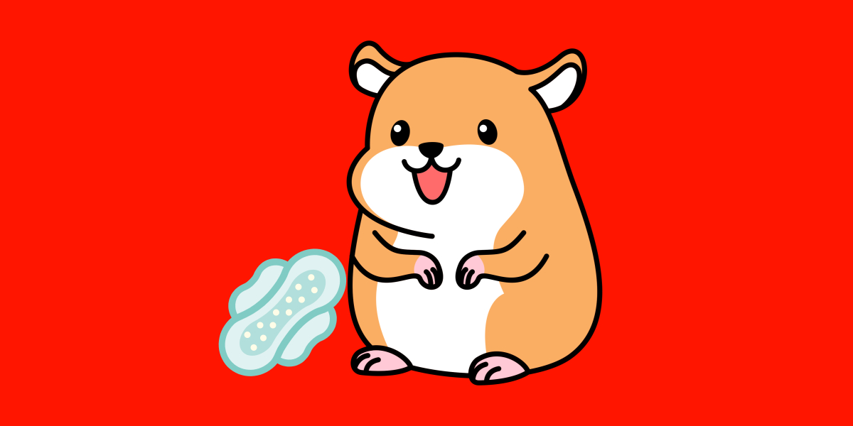 Do Hamsters Have Periods
