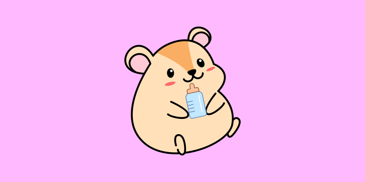 What Do Baby Hamsters Eat