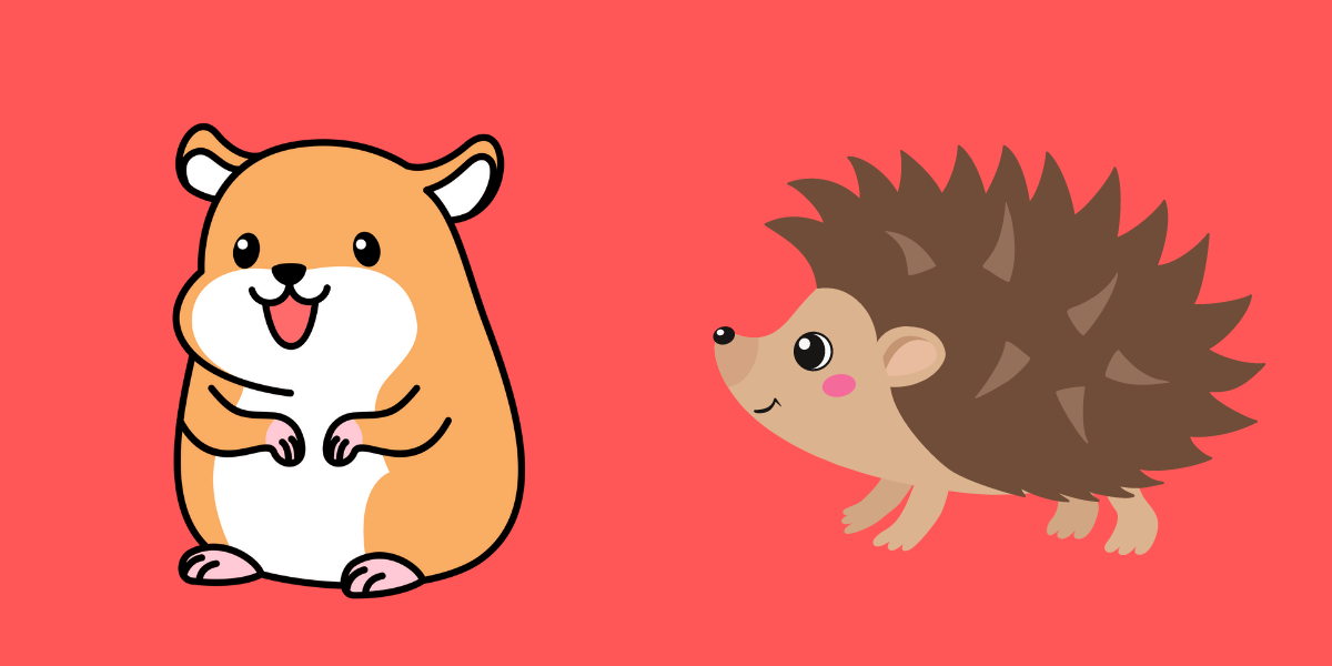 Can Hamsters And Hedgehogs Live Together?