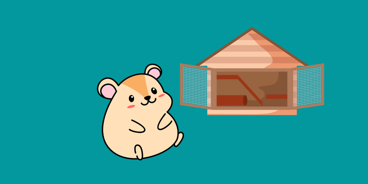 Why Do Hamsters Bite Their Cage?